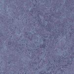 322135 hyacinth