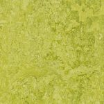 322435 chartreuse
